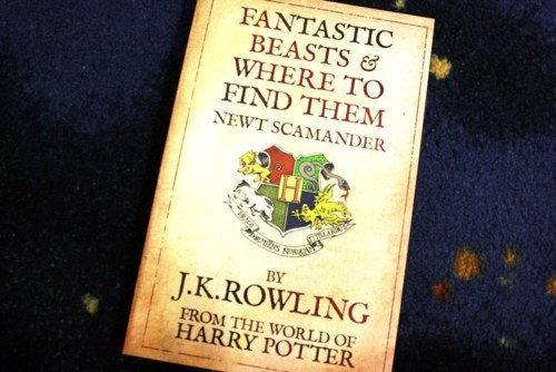 """Fantastic Beasts"" Wakes Up Harry Potter Fans"