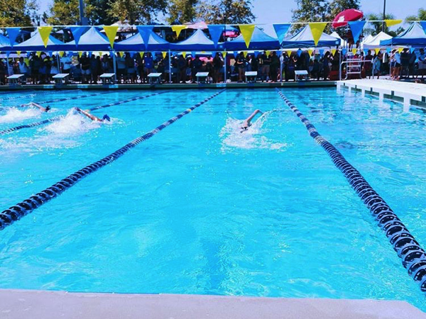 Swim Dives into the Competition