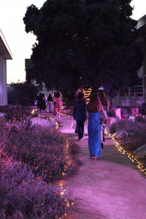 """Students make their way down the whimsical garden path into the Mad Tea Party Formal Event. The day before, as ASB was setting up the campus, ASB Advisor Ms. Eriksen expressed her excitement, saying """"I think people will be surprised at what school can look like when you throw some different lighting on it. I'm looking forward to it!"""""""